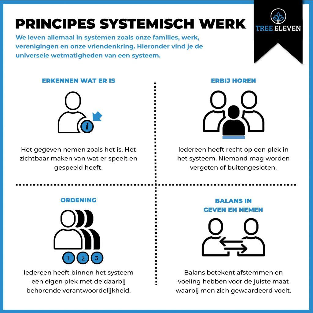 wetmatigheden Systemisch Werk