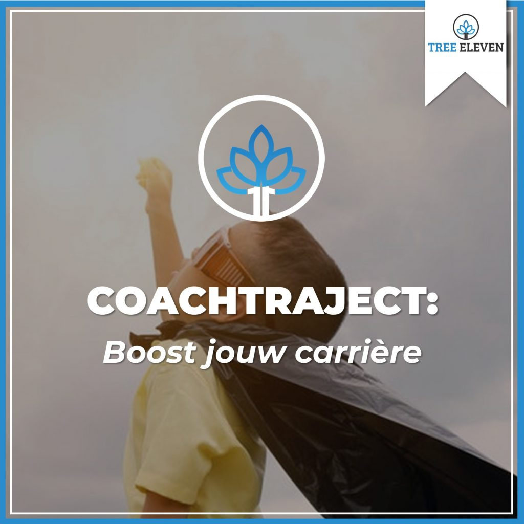 Tree Eleven Coachtraject Carriere Boost