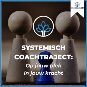 Systemisch coachtraject op jouw plek in jouw kracht