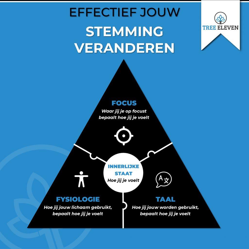 NLP voor Professionals Driehoek van Betekenis Tree Eleven