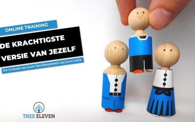 Familieopstellingen Online training