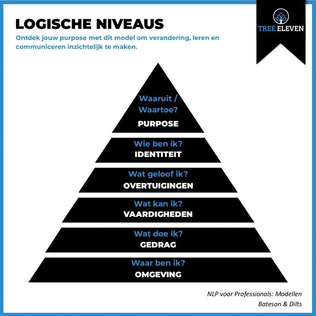 NLP voor professionals Logische Niveaus Tree Eleven