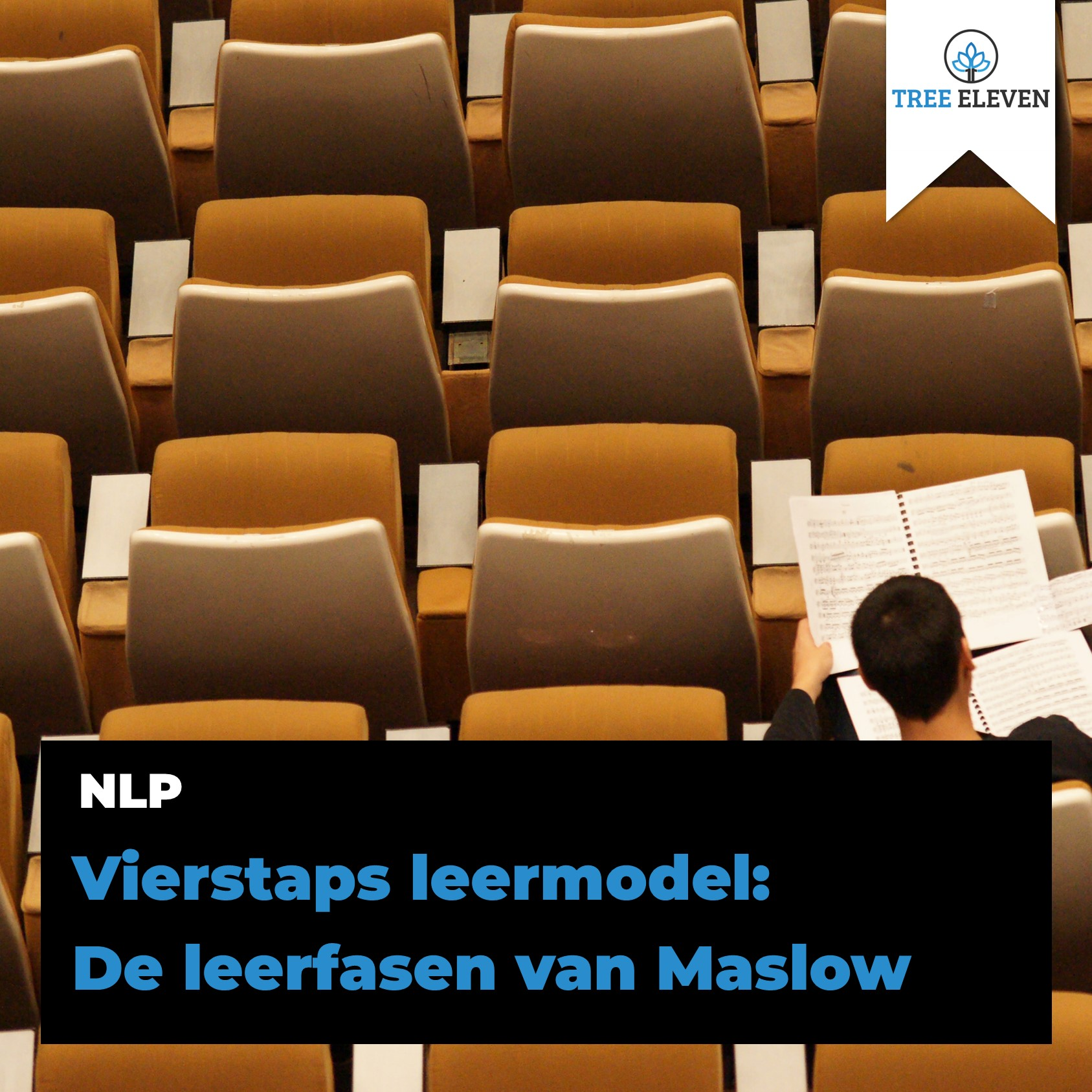 4 leerfasen Maslow